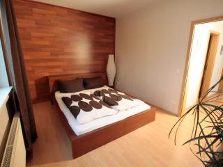 Huge and Sunny Apartment in Lorsch - Lorsch vacation rentals
