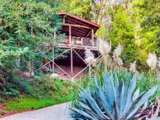 Pet-friendly, modern-rustic mountain getaway - Felton vacation rentals