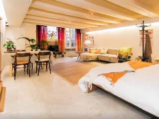 lovely centre apartment with canal view - Amsterdam vacation rentals