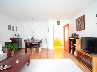ID 5297 | 2 room apartment | Langenhagen - Langenhagen vacation rentals