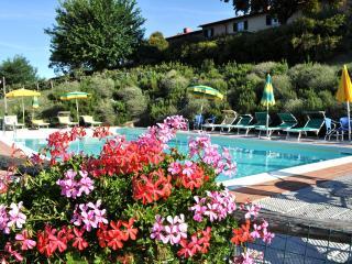 I nidi di Belforte appartamento Poiana - Dicomano vacation rentals