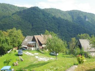 Tilnik Farmhouse Sovenia Rural Retreat Apt 1 - Cerkno vacation rentals