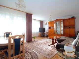 ID 4394 | 2 room apartment | WiFi | Laatzen - Laatzen vacation rentals