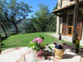 Bella vista - Dicomano vacation rentals