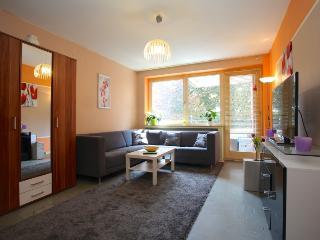 ID 4292 | 1 room apartment | WiFi | Laatzen - Laatzen vacation rentals