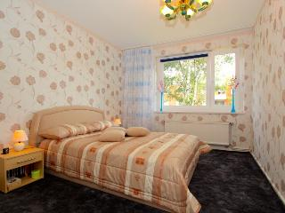 ID 4291 | 3 room apartment | WiFi | Hannover - Hannover vacation rentals