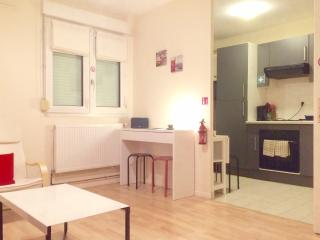 beau studio meublé à besançon - Belfort vacation rentals