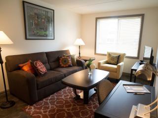 Erik's Retreat Minnesota - Queen Suite - Minneapolis vacation rentals