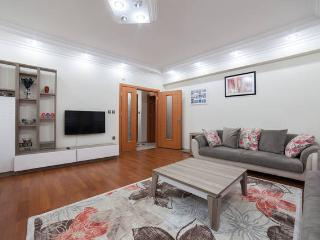 Majestic Flat,Close to Sultanahmet - Istanbul vacation rentals
