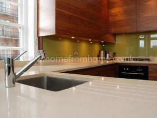 State-of-the-art & Stylish apartment- Central London - Walworth vacation rentals