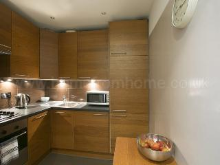 Smart and spacious studio apartment with great transport links- Shepherd's Bush - Windsor vacation rentals