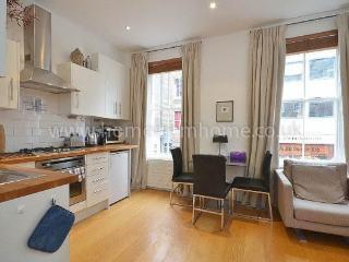 Contemporary London Apartment - London vacation rentals