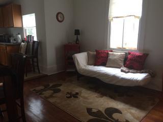 Lower Garden District Comfortable 2nd floor Apt - New Orleans vacation rentals