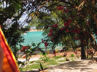 LOVELY VILLA - CLOSE TO ALL SERVICES - Great Exuma vacation rentals