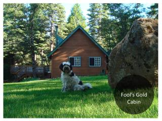 Fools Gold Cabin: Peaceful 10 acres, Sierra views - Dutch Flat vacation rentals