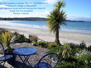 Frogmouth Cottage- Live right on the beach - Hobart vacation rentals