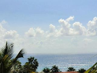 East of Eden:LOW Introductory rate~Private pool - Saint Croix vacation rentals