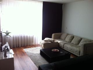 Nice apartment close to the center next to park - Amsterdam vacation rentals