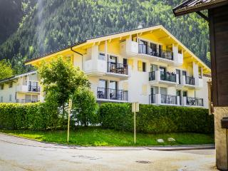 Astor Chamonix - Les Carroz-d'Araches vacation rentals