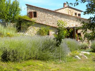 1 Bedroom Cottage in the Chianti Hills of Tuscany - Castellina In Chianti vacation rentals