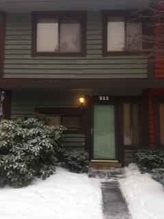 Front View - The Rustic Majesty: 3 BR 2 BA Townhome in - Hidden Valley - rentals