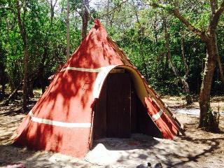 Glamp Don't Camp - La Fortuna de Bagaces vacation rentals