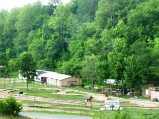Hilltop Cabin - Murphy vacation rentals
