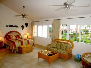 OCEAN DREAM PHASE 1 ARTIST LOFT BEACHFRONT STUDIO - Cabarete vacation rentals
