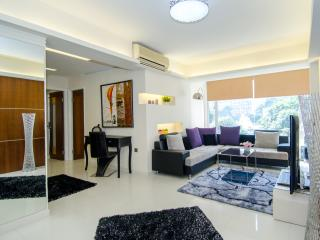 ILOVE IT!PENTHOUSE BIG LUXURY Boutique MTR  FAMILY - Hong Kong vacation rentals