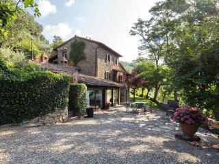 Villa dei Ciliegi: the pool is a dream - Cortona vacation rentals