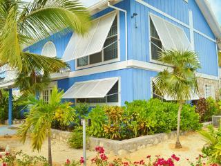 Grace Bay Beach Villa - near Snorkeling, Pool - Grace Bay vacation rentals