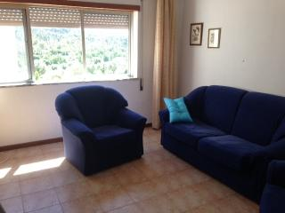 2 bedroom flat in sunny Central Portugal - Tabua vacation rentals