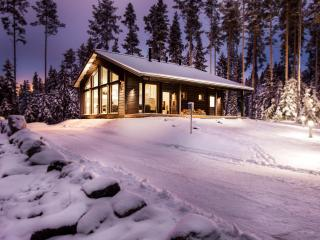 Villa Polaris - Tampere vacation rentals