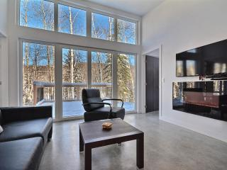Promo: $850/5 Nights-10mn from Tremblant MTN - Mont Tremblant vacation rentals