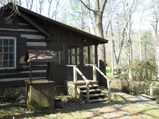 lovely cabin on the dan river - Woolwine vacation rentals