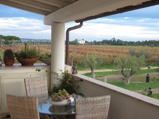 Wineyard - Tarquinia vacation rentals