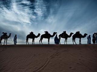 Caravane de Reve - M'Hamid vacation rentals