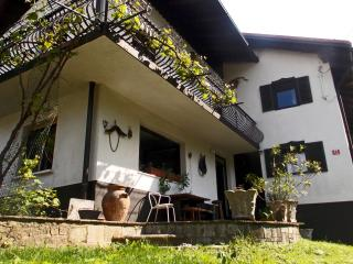 Big house by the creek, near to the mountains - Tolmin vacation rentals