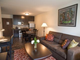 Queen Suite with Full Kitchen - Edina vacation rentals