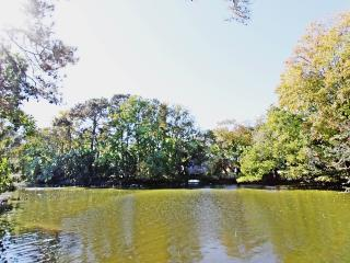 Duck Dreamer - Lakefront House Near Downtown - Charleston Area vacation rentals