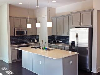 Beautiful, Central 4-Bed Townhouse - Austin vacation rentals