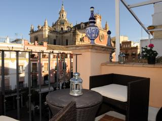 Wonderful Duplex Terrace Center Of Seville  wifi. - Province of Seville vacation rentals