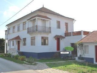 Termas-da-Azenha: Casa Africa - Figueira da Foz vacation rentals