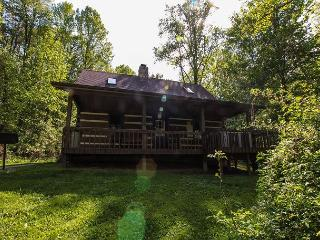 Beautiful Log Cabin near Lake Logan - Logan vacation rentals