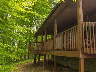Great Log Home For Get Togethers - Sugar Grove vacation rentals