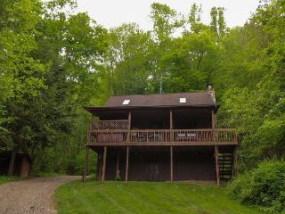 Pioneer Log Cabin Rental - Ohio vacation rentals