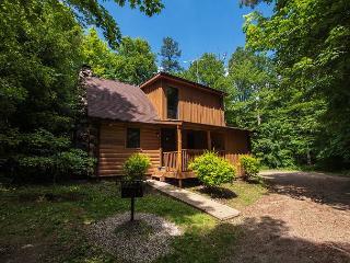 Very Cozy Hocking Hills Log Cabin - Logan vacation rentals