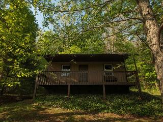Romantic Cabin For 2 - Sugar Grove vacation rentals