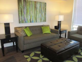 Lux Spring Hill 1BR w/Pool, WiFi - McLean vacation rentals