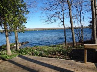 Lakefront Cottage just feet away on Miller Lake - Red Bay vacation rentals